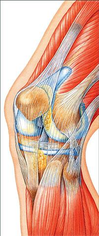 можно грязью лечить суставы